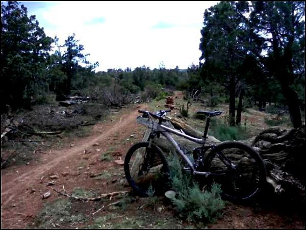 mogollon bike