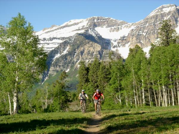 Ridge trail 157 view